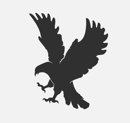 silhouette flying eagle on a white background Stock Photo