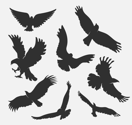 silhouette flying eagle on white background Ilustrace