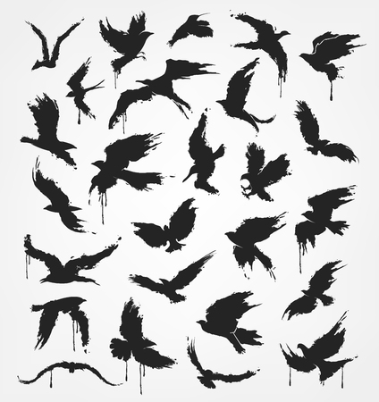 warble: A figures of flying birds in grunge style colors