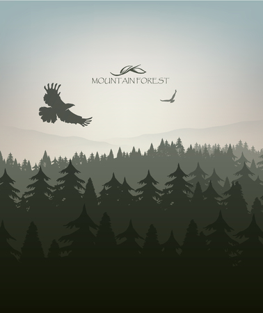 mountain forest in fog and eagle