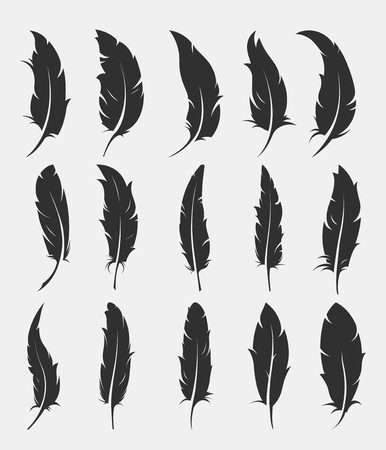 Set of old feather for writing on white background Illustration