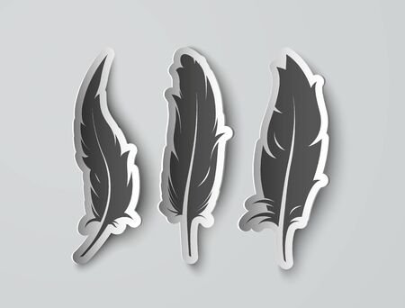 three set isolated paper feathers with shadows