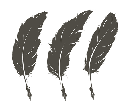 Set of three isolated old feathers for writing