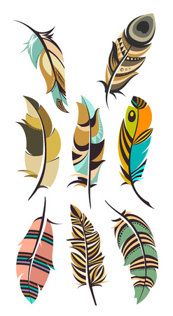 set of multicolored feathers isolated on white background