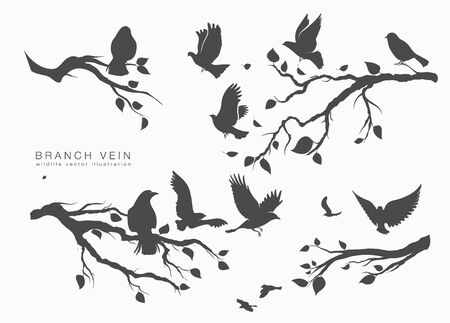 figure flock of flying birds on tree branch