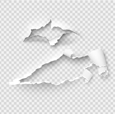Torn ripped paper vector template, sides with ripped edges on realistic paper background. Ripped side set of banners for web and print and space for text.
