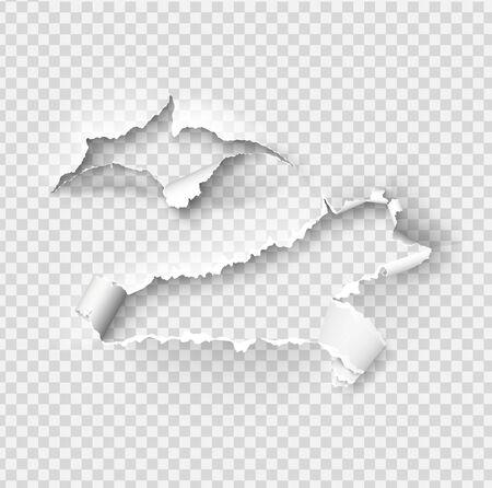 Modello vettoriale di carta strappata strappata, lati con bordi strappati su sfondo di carta realistico. Set laterale strappato di banner per web e stampa e spazio per il testo. Vettoriali