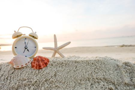 Beach sand with shells and starfish, alarm clock, Summer concept with sandy beach. Cozy seaside morning.