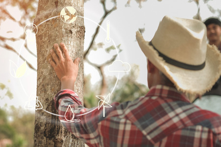 Hand placed on the trunk of a big tree with icons about environment on image , Concept of environmental conservation and protection of our world sustainable. 스톡 콘텐츠