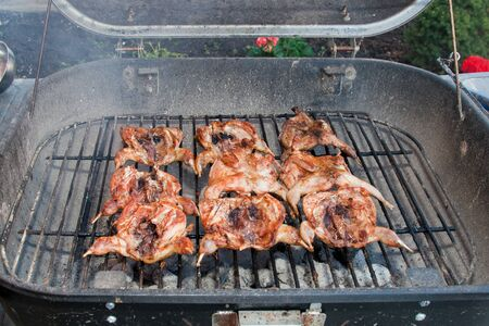 BBQ quails cooking on a grill in the garden Stock Photo