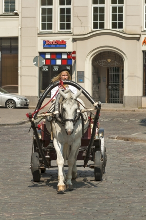 Riga, Latvia - July 27, 2012: Woman horse carriage on a Riga city street in Latvia. Stock Photo - 15699760