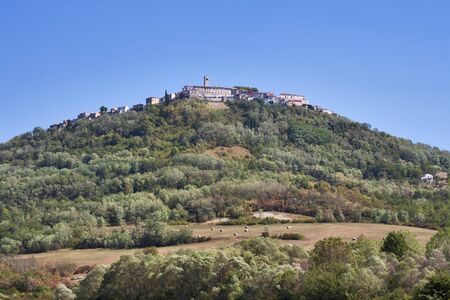 Medieval town Motovun on top of the hill on Istria peninsula in Croatia. photo