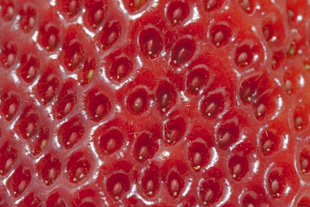 fresh red strawberry surface macro background photo