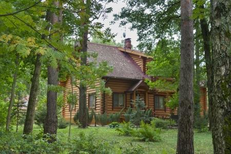jungle green: casa de campo de madera en el bosque Editorial