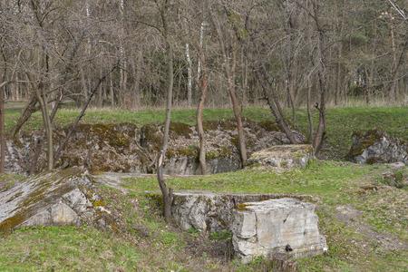 adolf hitler: Concrete ruins of Adolf Hitler residence Werwolf near Vinnitsa, Ukraine