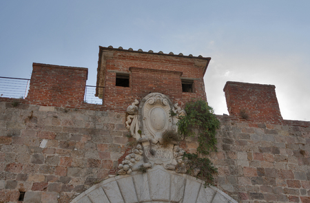 city coat of arms: Coat of arms of the House of Medici on Pisa city wall. Tuscany, Italy. Editorial