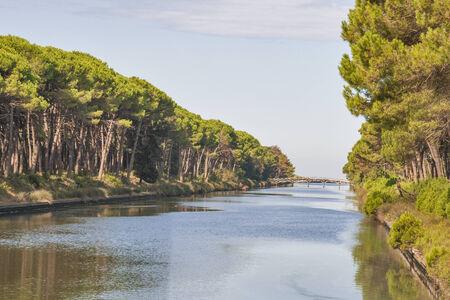 산 Rossore 지역 공원, 토스카나, 이탈리아의 채널