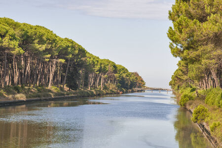 Channel of San Rossore Regional Park, Tuscany, Italy