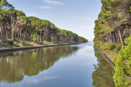 regional: Canal de San Rossore Parque Regional, Toscana, Italia