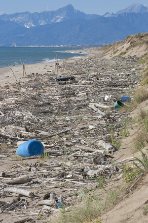 global pollution on sea beach in Tuscany, Italy photo