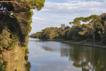 regional: Channel of San Rossore Regional Park, Tuscany, Italy