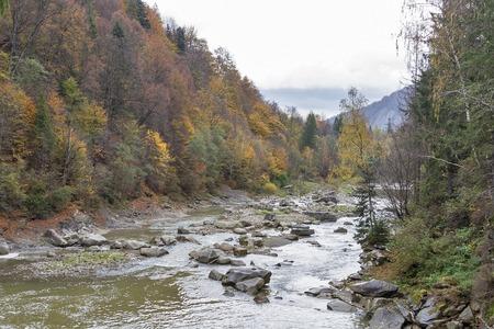 Carpathians mountains and river Prut in autumn, Ukraine.