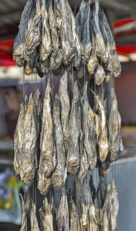 bullhead fish: Dried salted bullhead goby fish on a cord on sale in street market