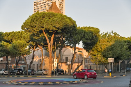RIMINI, ITALY - SEPTEMBER 24, 2016: Girolamo Savonarola beautiful street with green pines in city center. Rimini is one of most famous Adriatic Sea resorts in Europe thanks to 15 km long sandy beach.