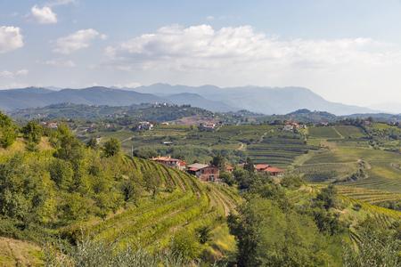 paisaje mediterraneo: Rural mediterranean landscape with village, vineyards and mountains
