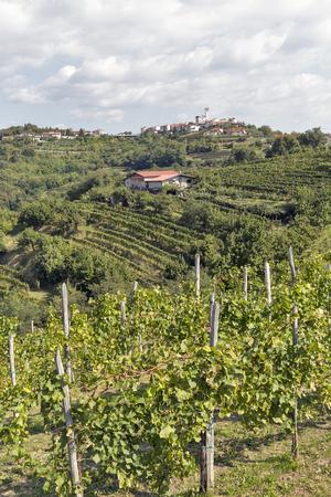 paisaje mediterraneo: Picturesque rural mediterranean landscape with village, vineyards and mountains Foto de archivo