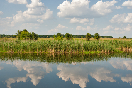 Quiet Ros river in summer with clouds reflection, Ukraine