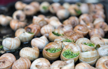 grape snail: Cooked snails with garlic herbs sauce closeup Stock Photo