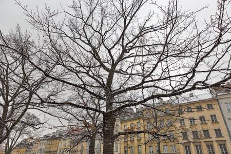 street lamp: Christmas Krakowskie Przedmiescie or Krakow suburb street in Warsaw, Poland.