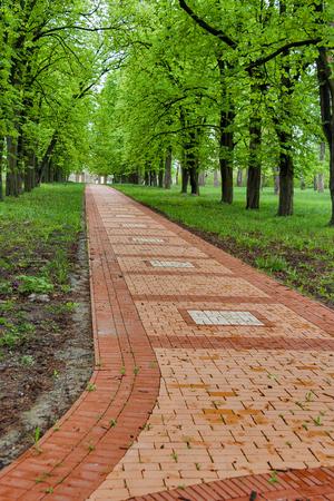 Stone paving in the Engelhardt estate garden. Engelhardt was landowner of young famous Ukrainian poet Taras Shevchenko in Kirillivka or Shevchenkove, Ukraine.