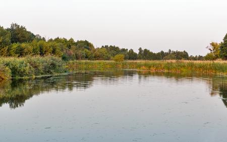 Ros river sunset summer landscape, Central Ukraine. Banco de Imagens