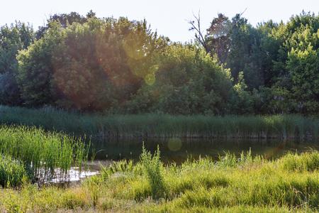 Summer river Ros rural landscape with sun beams, Ukraine Banco de Imagens
