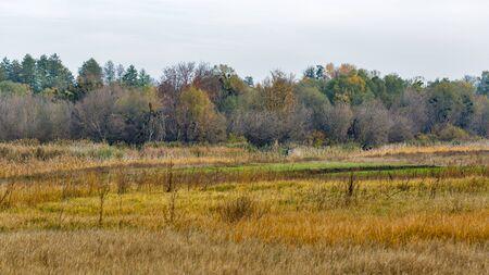 Ros river valley autumn landscape, Central Ukraine. Banco de Imagens
