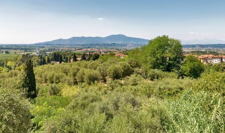 Mediterranean landscape view from the Montopoli hill. Montopoli in Val d'Arno is a municipality in the Province of Pisa in the Italian region Tuscany.