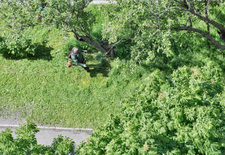 Worker mows the grass with a gasoline brushcutter in the city, top view Stok Fotoğraf