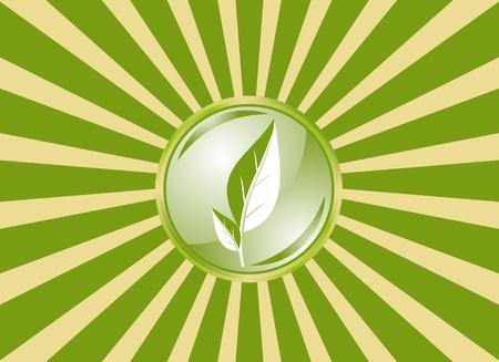 광선과 잎 녹색 깃발 스톡 콘텐츠 - 9359729