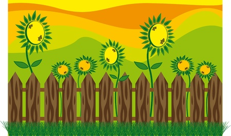garden with sunflowers outside the fence Stock Vector - 9721043