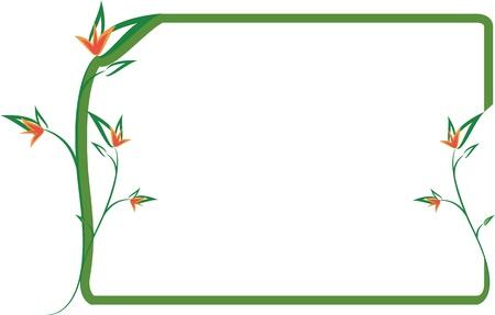 floral border frame: Green floral frame with orange flowers