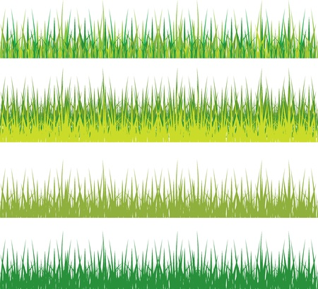 set of green grass silhouettes Vector