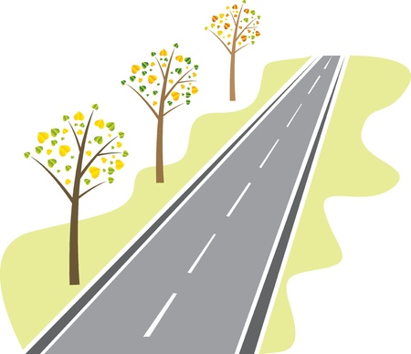 the roadside: trees with leaves from the asphalt road