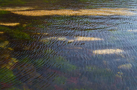 surface texture of the sea with ripples on the water Stock Photo - 12685489