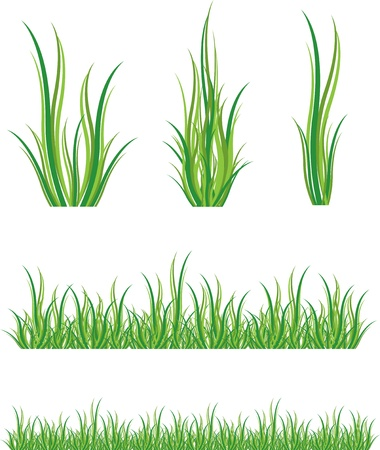set of green grass and shrubs Vector