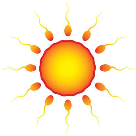 sperm around the egg as the sun Ilustração