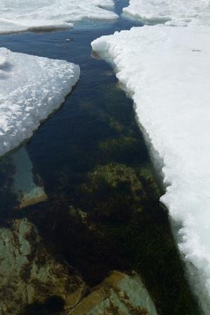 crack in the sea ice in spring Stock Photo