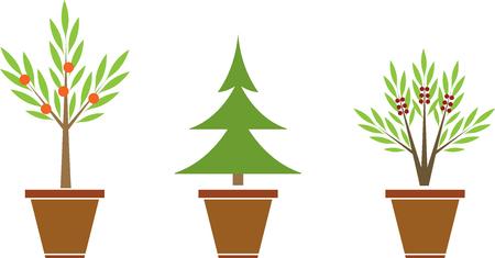 Set of plants in pots Vector