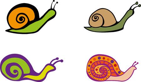 mollusk: Set of color graphic snails